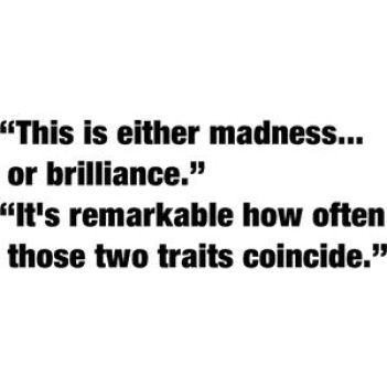 either madness or brilliance