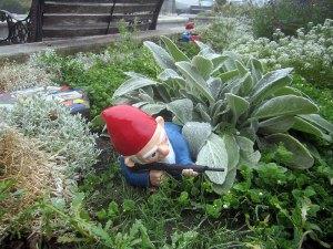 yard gnome statue