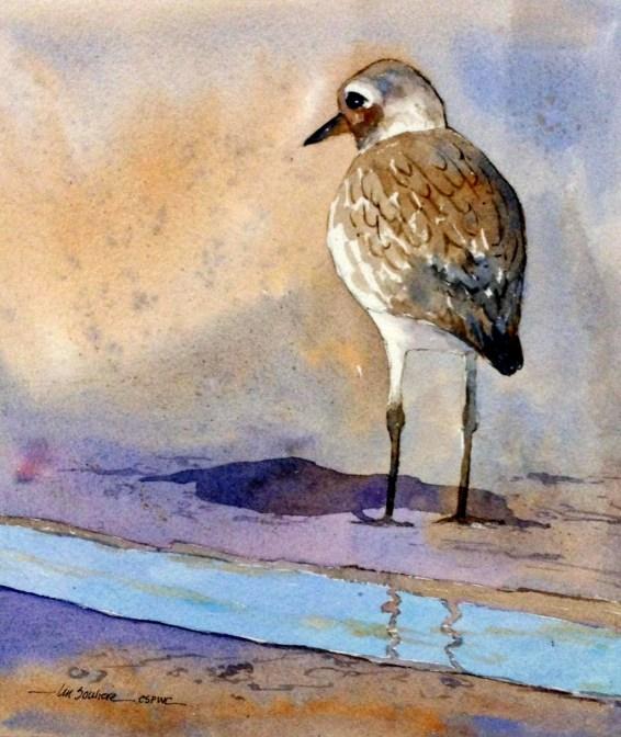 Shorebird - Lin Souliere
