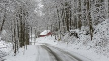 winterroadbybrucestambaugh