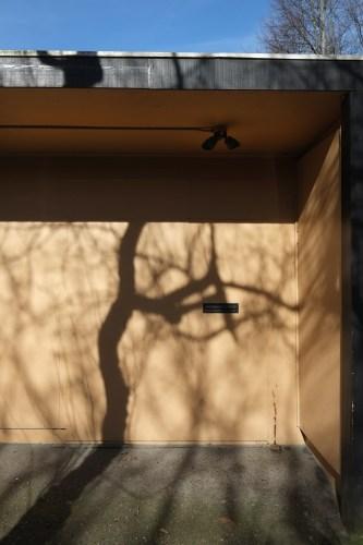 Shadow11_15