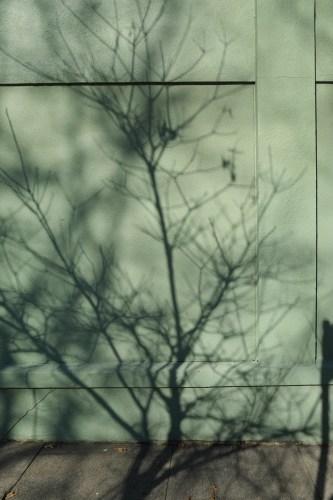 Shadow3_15