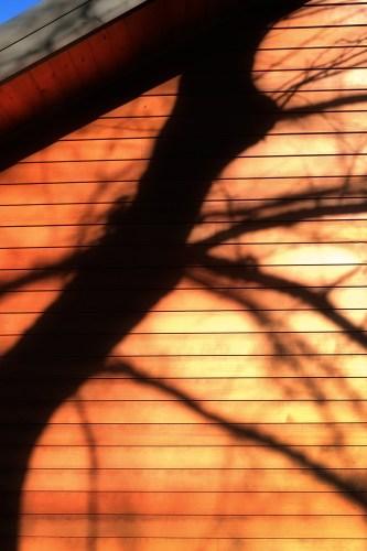 Shadow4_16