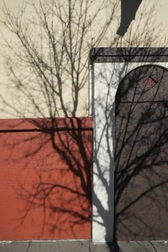 Shadow8_15
