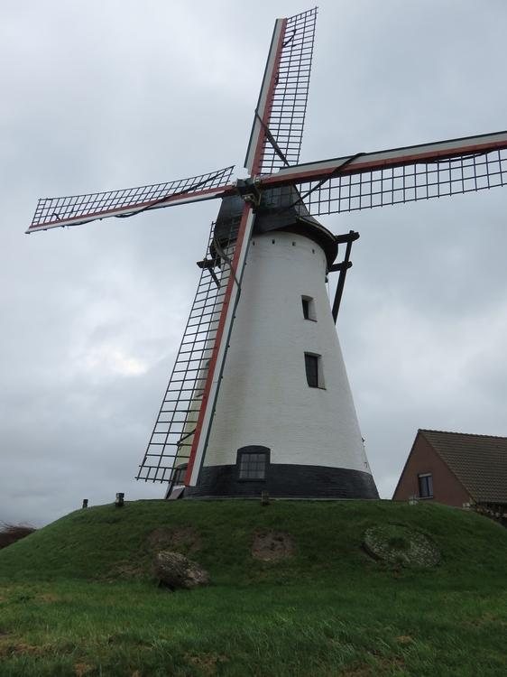 witte molen met 4 wieken, boven op heuvel