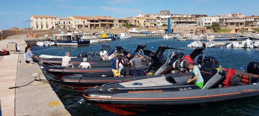 RIBcruise Corsica Sardinia