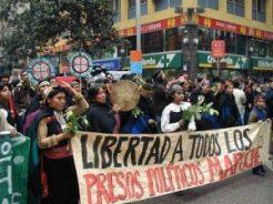 145952_marcha_mapuche