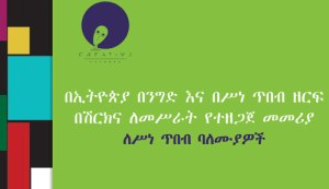 Business Sector Engagement Toolkit for the creative in Amharic