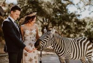Bruidspaar met zebra