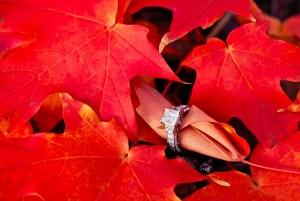Herfstbruiloft ring