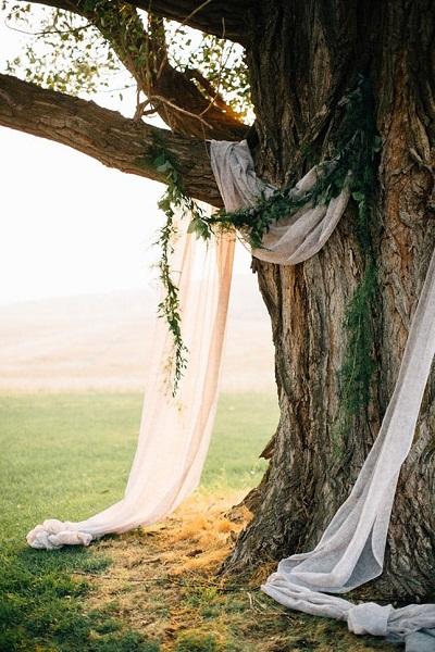 Backdrop om boom heen