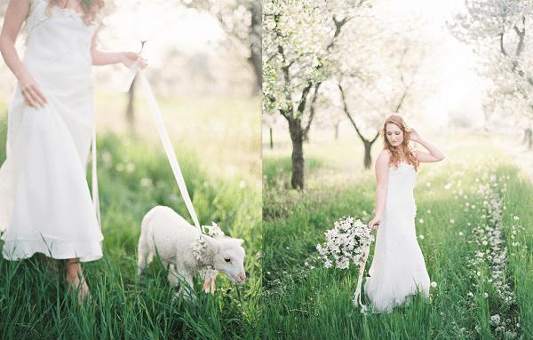 Lente bruiloft met lammetje