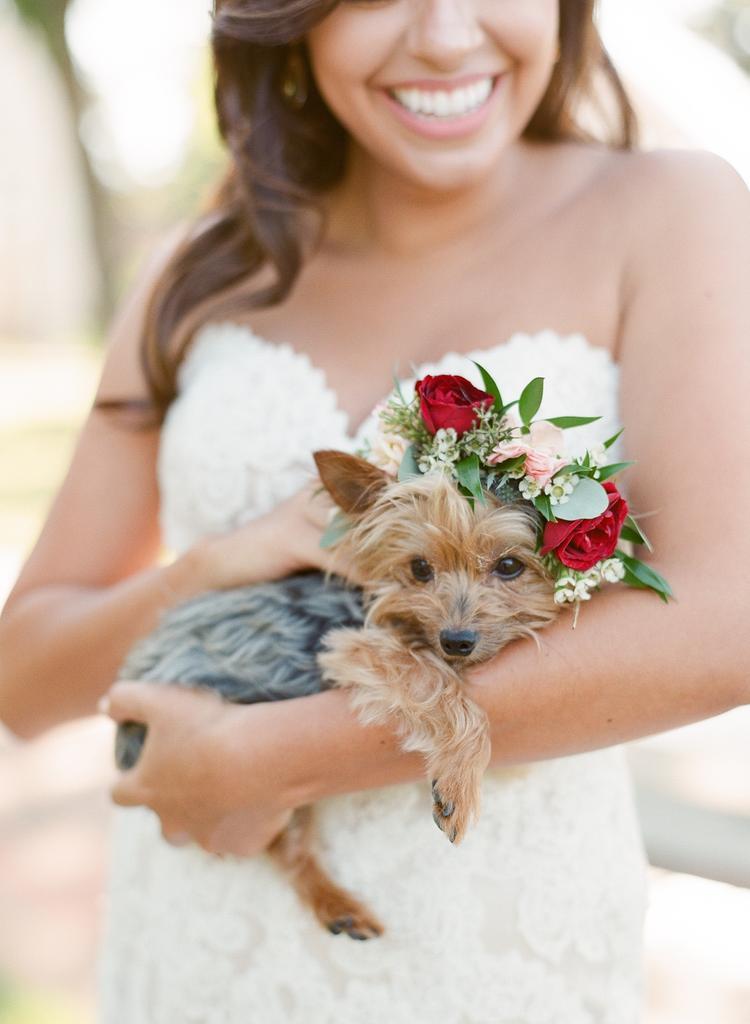 Bruiloft hond met bloemen als accessoires