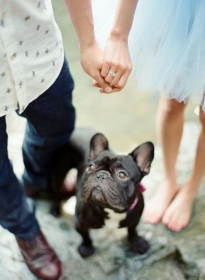 Verlovingsfoto met hond