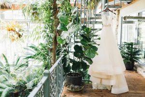 Bruidsjurk tussen de planten