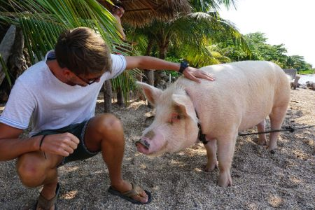 Ms. Piggy Roatan