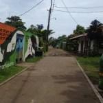 Tortuguero Village walking path