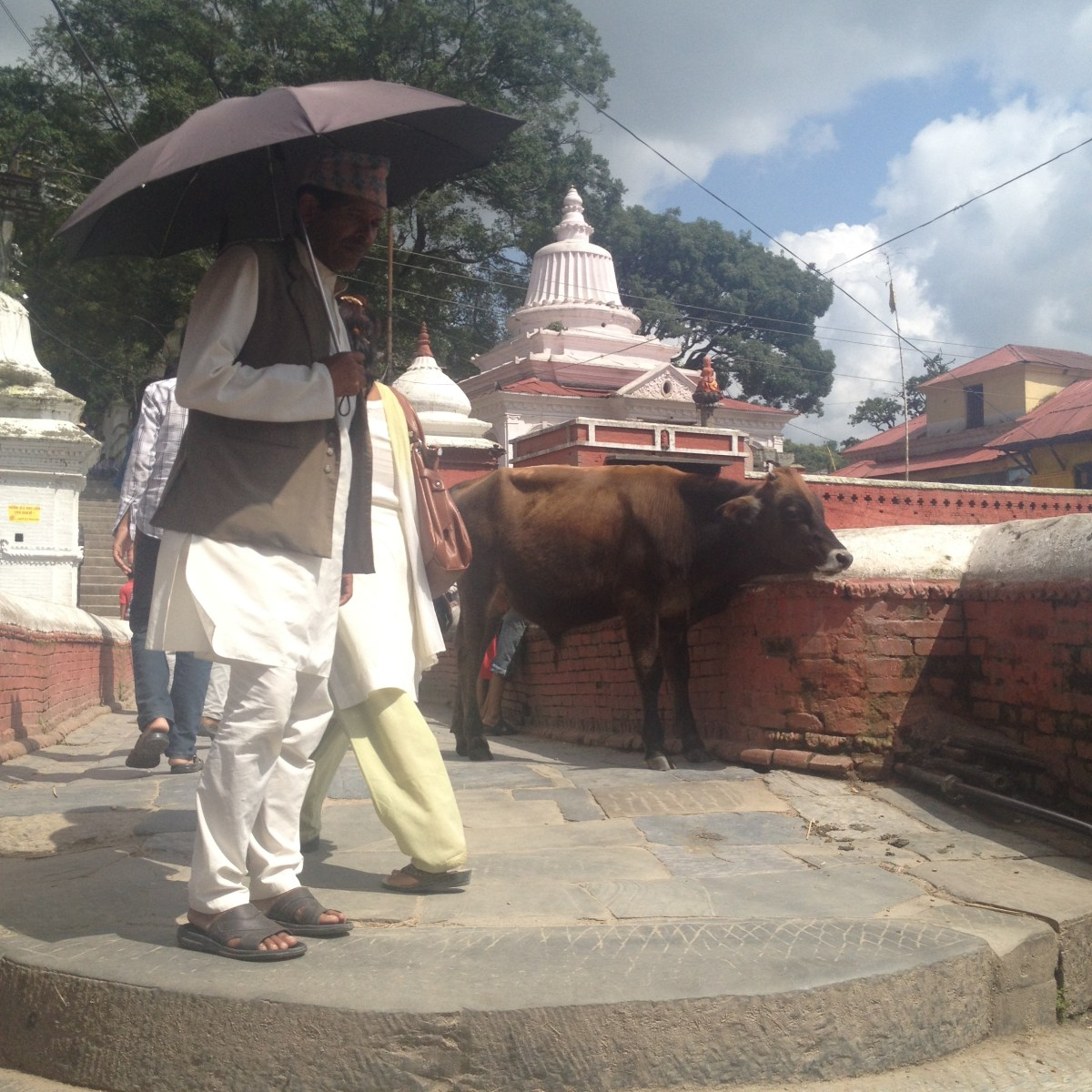 Nepal Travel: Waiting for a Taxi in Kathmandu