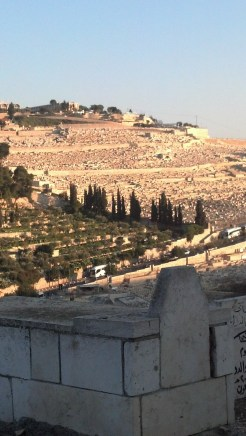 The Mount of Olives is regarded by the Orthodox tradition as the burial of the Virgin Mary.