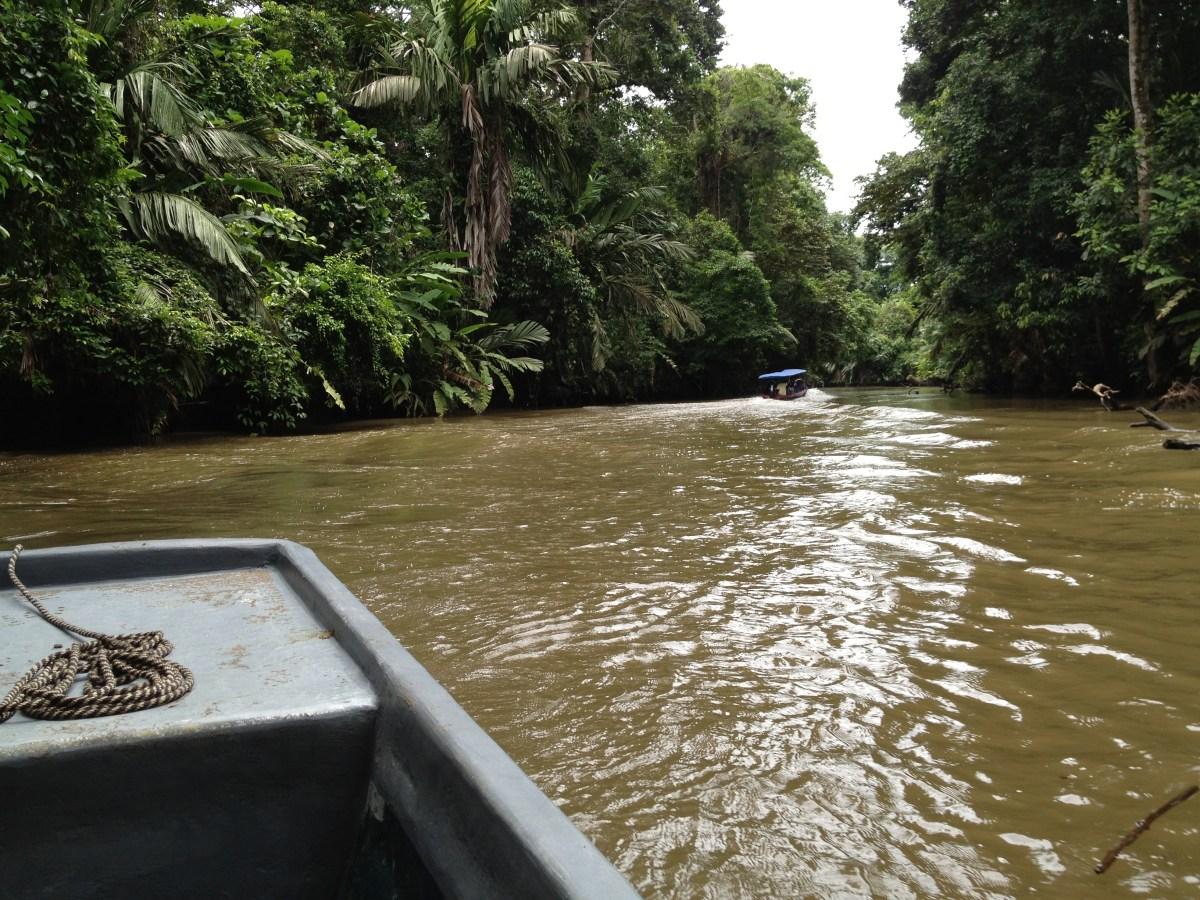 Costa Rica Tourism: Boat Trip to Tortuguero Part II