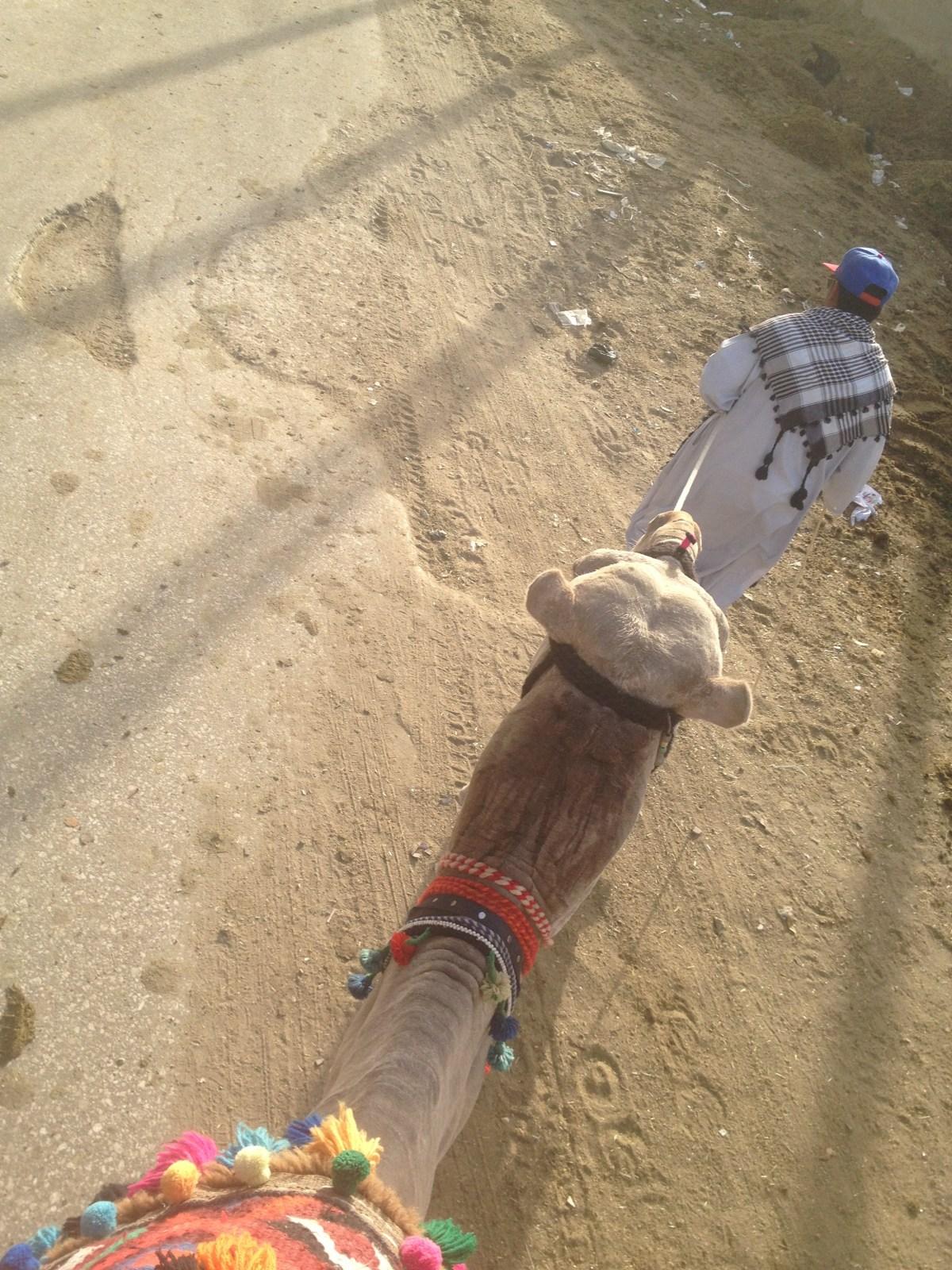 Egypt Tourism: Camel Ride to the Pyramids