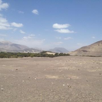 The desert around Chauchilla Cemetery.