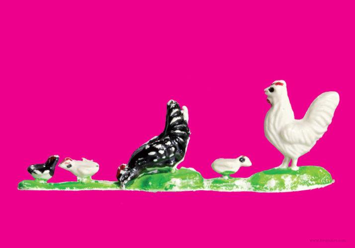 Plastic Fantastic: Chickens