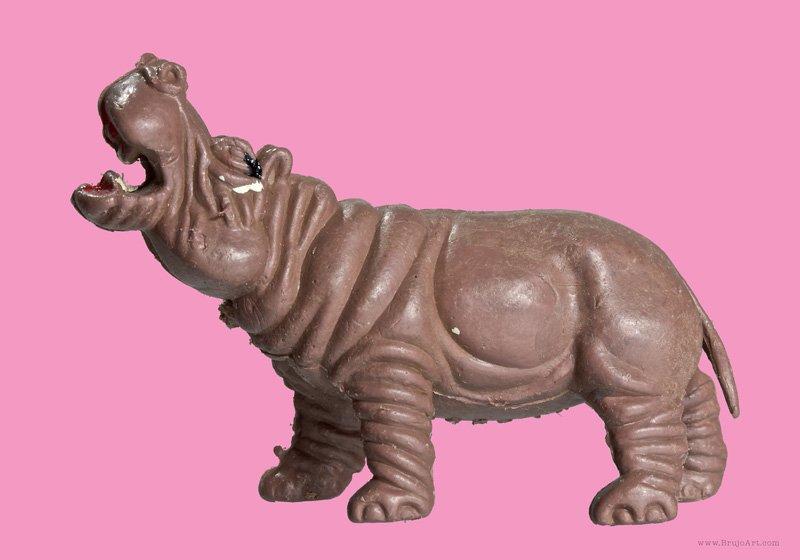 Plastic Fantastic: Hippo