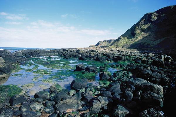 wybrzeze / coast