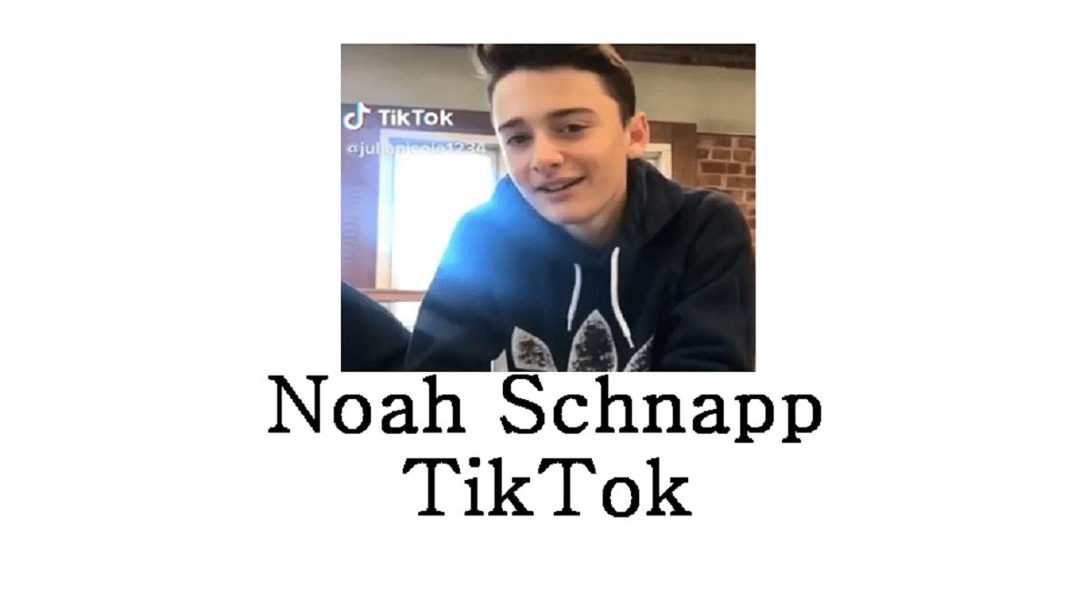 Noah Schnapp TikTok
