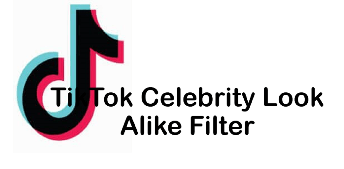 TikTok celebrity look alike filter
