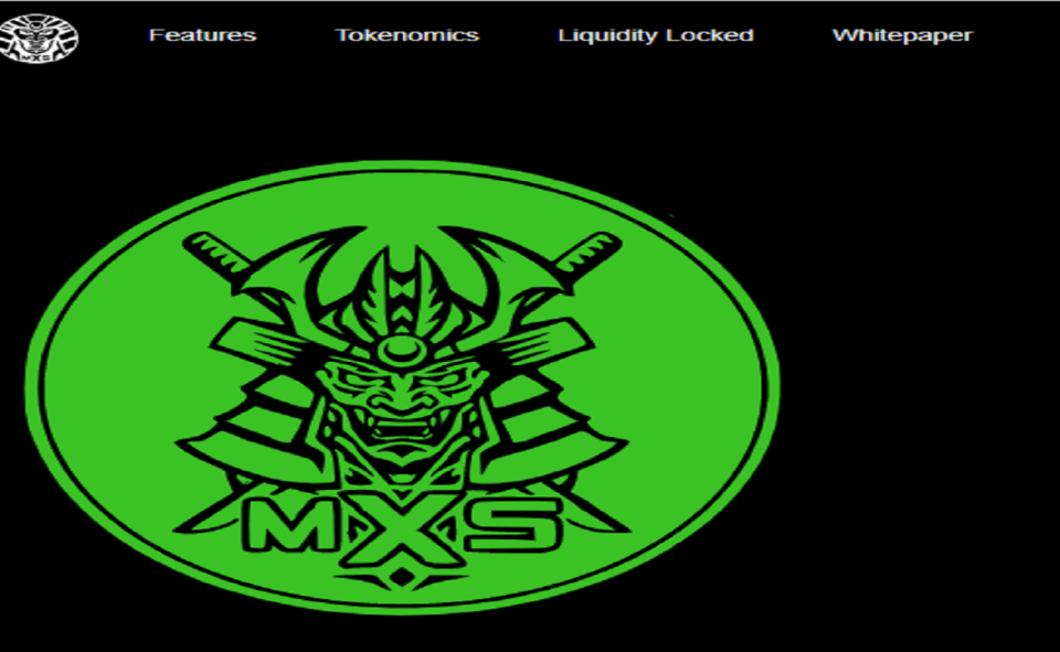 Image Of What Is Matrix Samurai Token