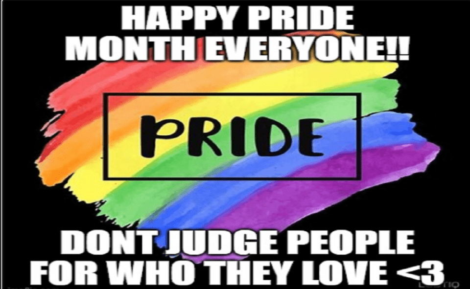 Image Of What Is Pride Month Meme
