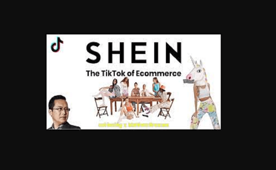 Image Of What does Shein Cares Mean on TikTok