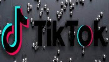 TikTok Magnet Challenge