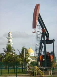 BRUNEIresourcescom  Brunei Tourism