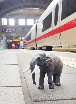 Elefant steht auf einem Bahnsteig des Der Elefant steht auf einem Bahnsteig des Leipziger Hauptbahnhofs