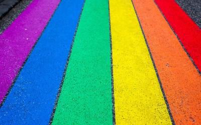 'Het wordt tijd om het misverstand uit de wereld te helpen dat sport en de regenboog niet samengaan' (Sportmagazine Knack)