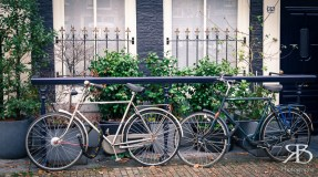 0489 Amsterdam_LR 13