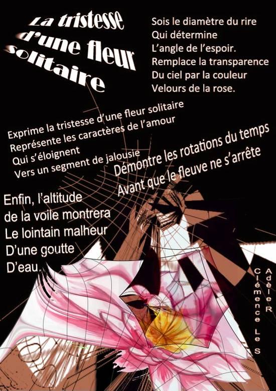 1s2_ppf_la_tristesse_dune_fleur_solitaire_111.1288390781.JPG