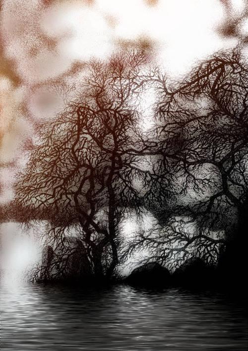 arbres_sur_le_loing_bruno_rigolt.1288425474.jpg