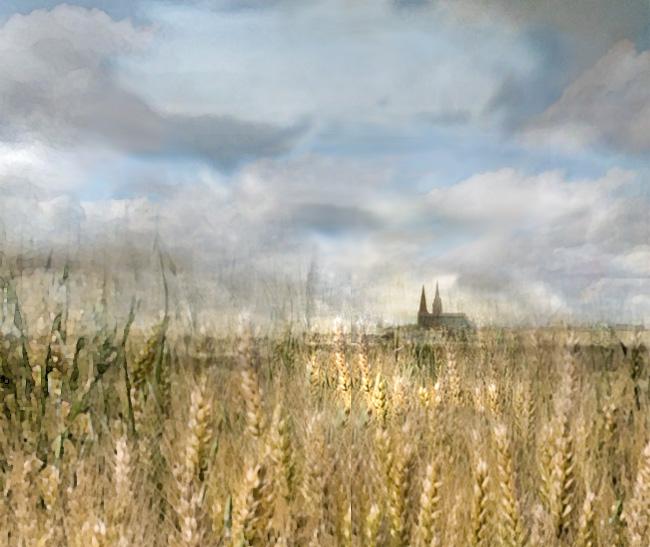 Champs de blé dans la Beauce_Chartres-a_modifié-2