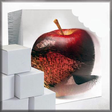 pomme-extraordinaire_4