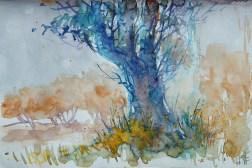 231_2016 Watercolor-Sketches /Daler-Rowney Graduate Sketchbook, 21,0 x 14,9 cm / 8.3 x 5.8 in / Lukas Aquarell 1862
