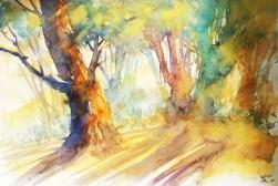 272_2016 Watercolor-Sketches /Marabu Mixed Media 21,0 x 14,8 cm / 8.3 x 5.8 in / Lukas Aquarell 1862
