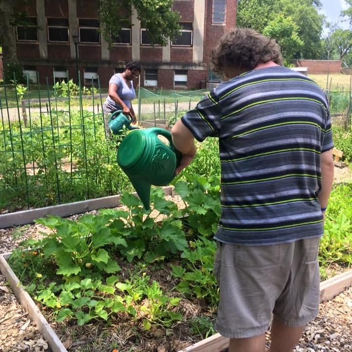 Veggies grown at Norristown Community Garden