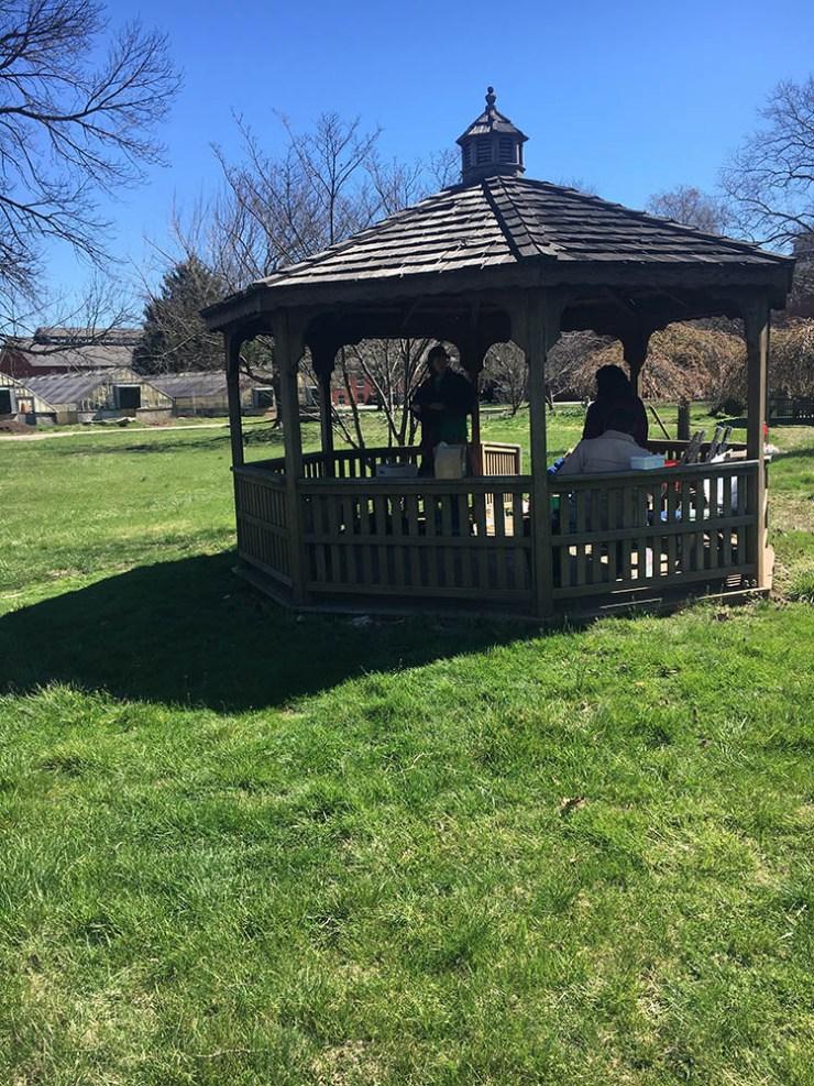 Norristown Community Garden