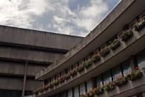 Birmingham Central Library 10