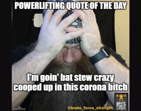 Bat Stew Crazy