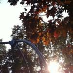 秘密の細道@Parc du Wolwendael
